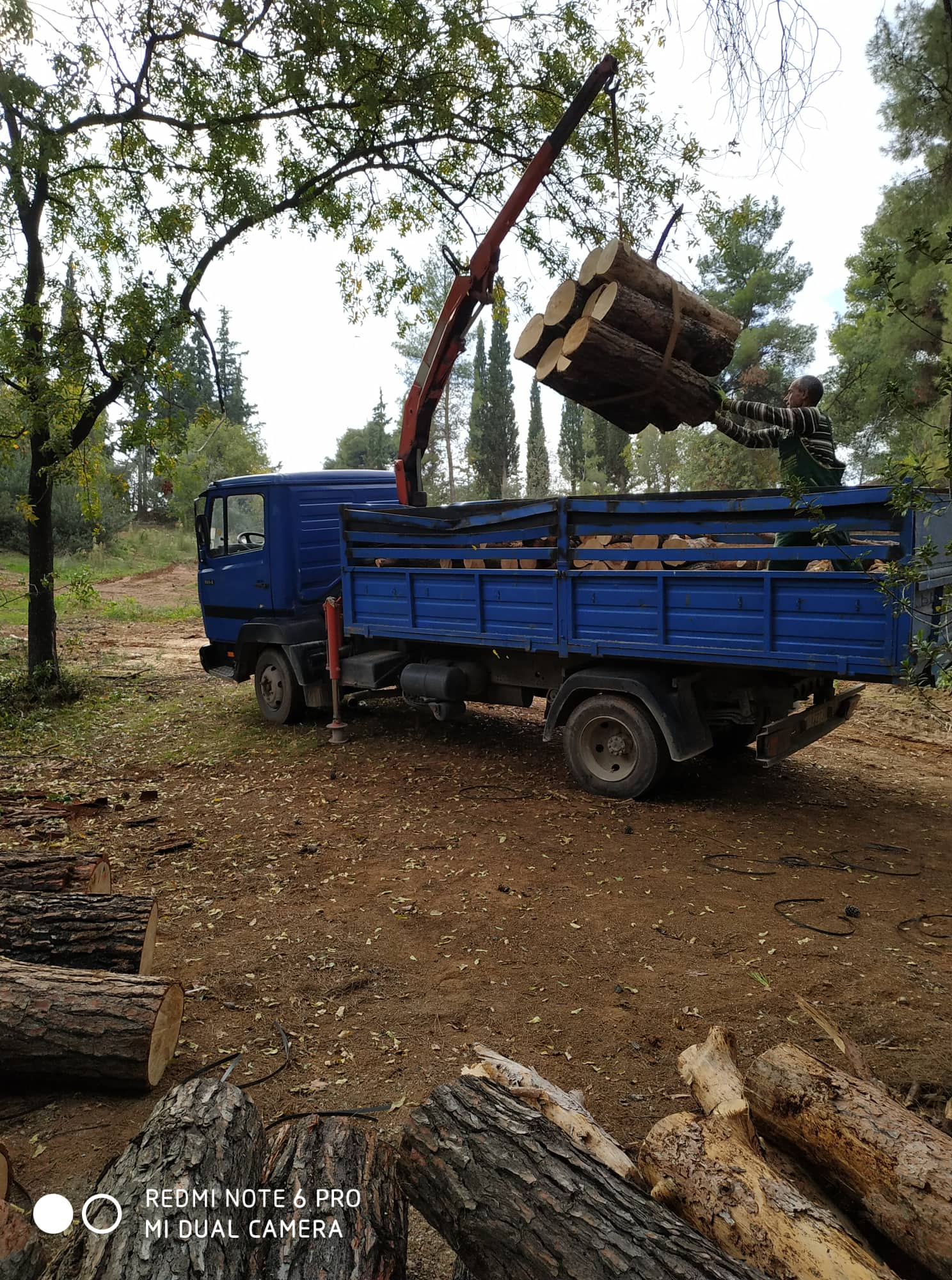 φόρτωση ξύλων σε φορτηγό